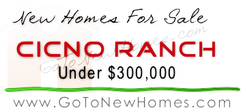 Cinco Ranch New Homes under $300K